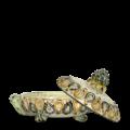 Tartaruga portagioie